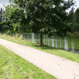Park am Fischerdorf